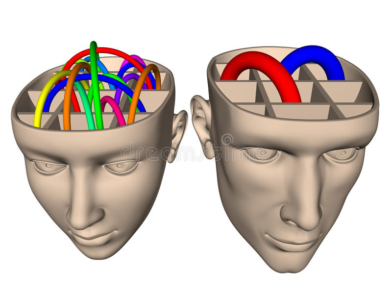 Difference between brain of woman and man - cartoo vector illustration