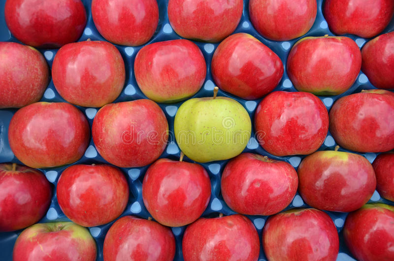Difference concept. Picture of a red and green apples stock photos