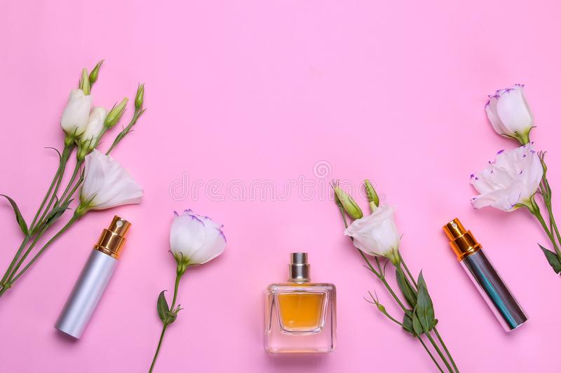 Bottles of perfume and beautiful flowers eustoma on a bright pink background. Women`s accessories. top view royalty free stock photo