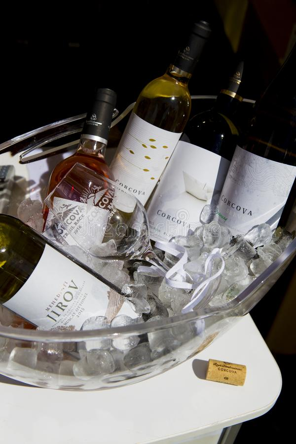 Different bottles of wine in a bole with ice royalty free stock image