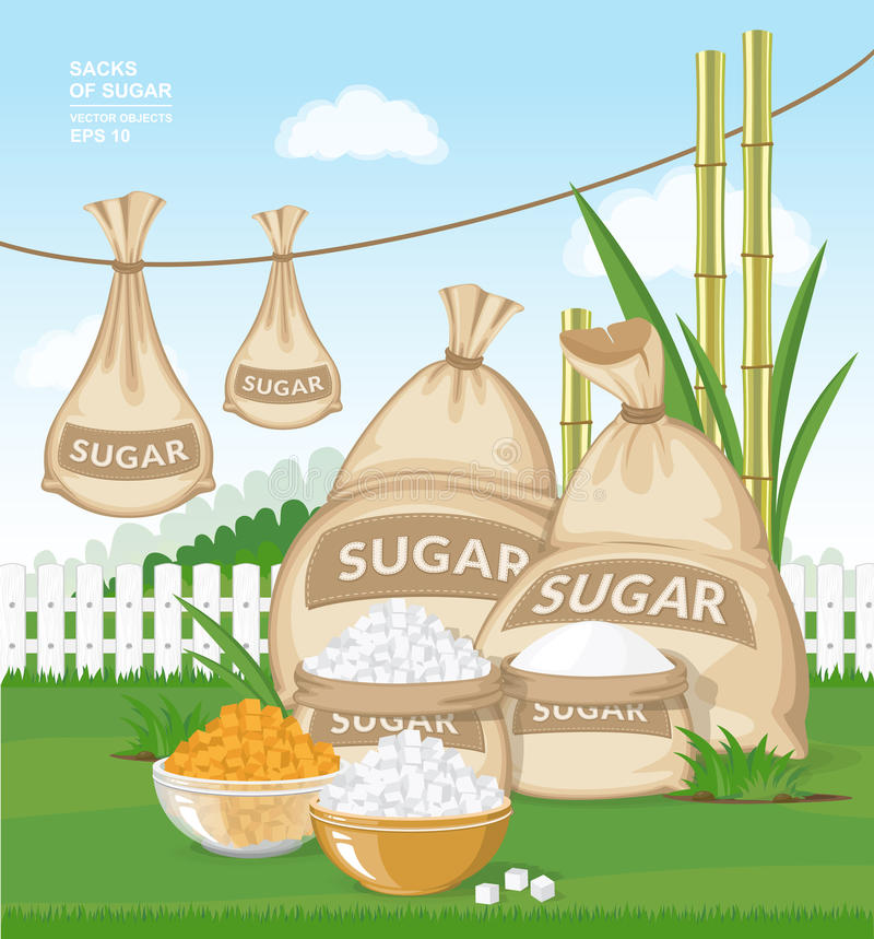 Different burlap sacks of sugar in the garden. White and brown sugar cubes in bowls on fresh green grass vector illustration