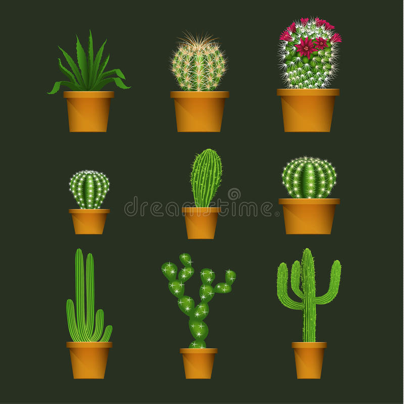 Different cactus types in flower pot realistic vector icons set stock illustration
