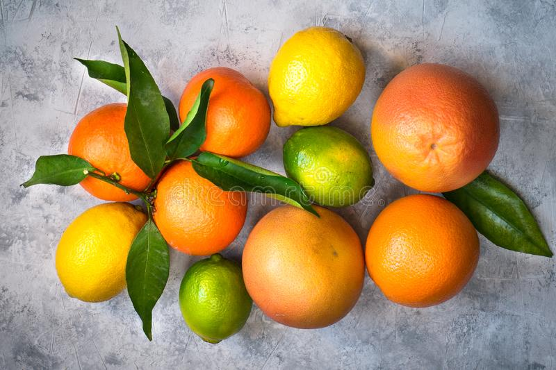 Different citrus fruit on grey concrete table. stock image