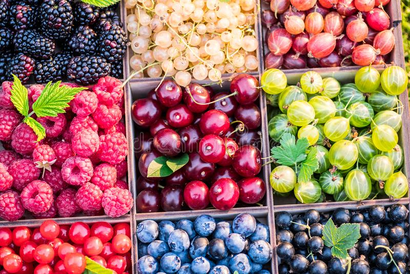 Different colorful berries in wooden box. Close-up royalty free stock photography