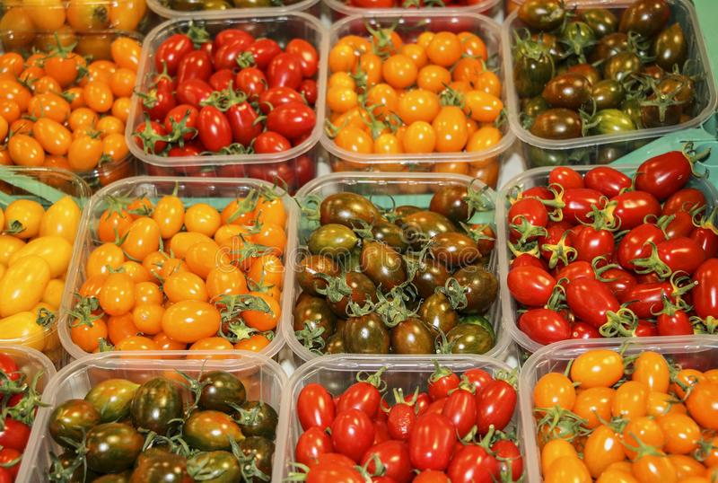 Different colorful tomato breeds at farmers market in Rome,Italy stock photos