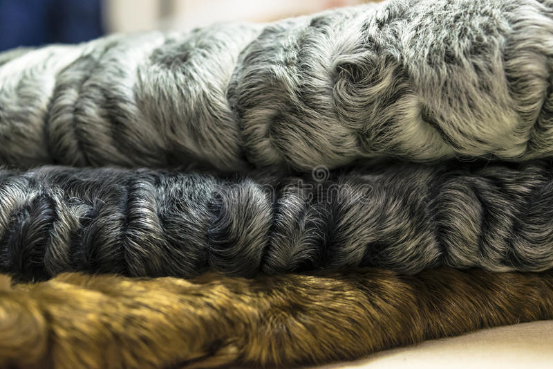 Different colors of karakul pelts, lambskin texture, background stock photos