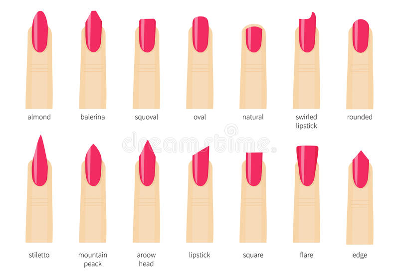 Image result for clipart of different nail shapes