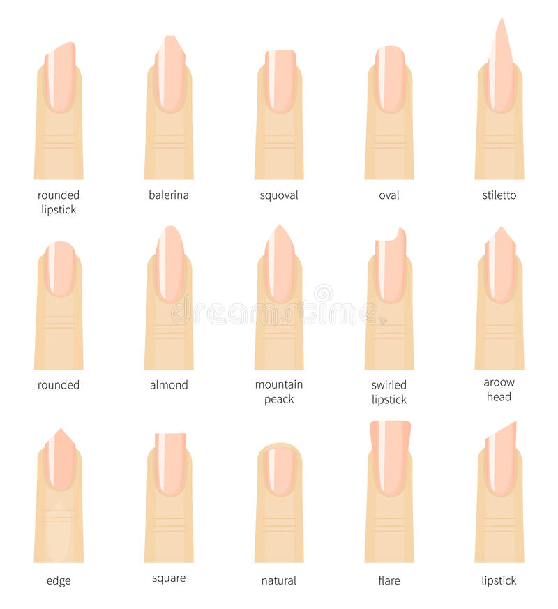 Different Fashion Nail Shapes. Set Kinds Of Nails. Salon Nails Type ...