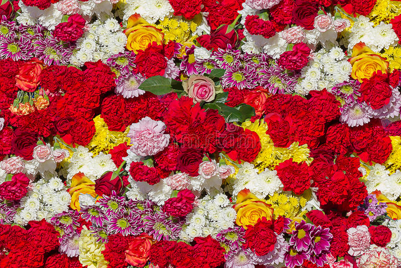 Different flowers stock photo image of bunch asters for Different color roses bouquet