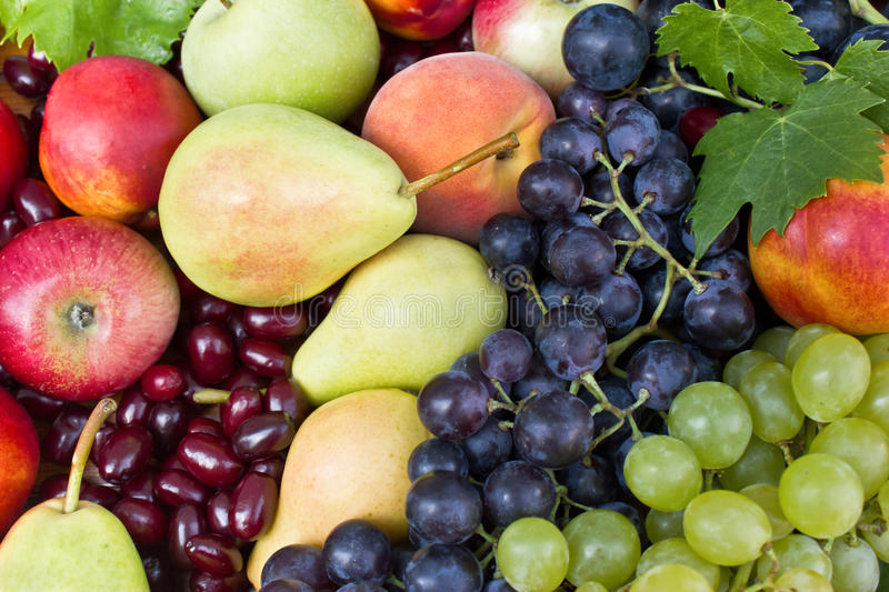 Download Different Fresh Fruit Royalty Free Stock Photos - Image: 22365268