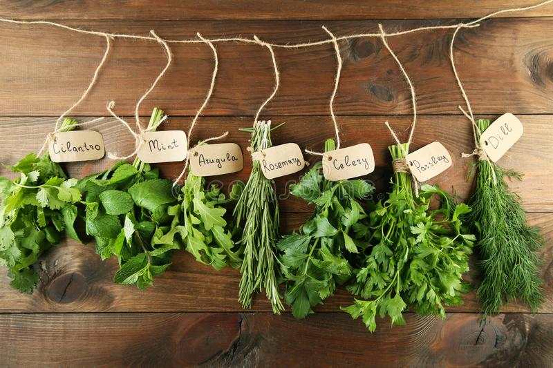 Different herbs. Different fresh herbs on brown wooden background royalty free stock photography