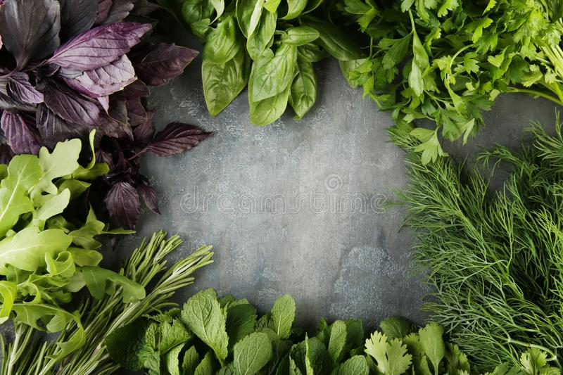 Different fresh herbs. On grey wooden table royalty free stock image