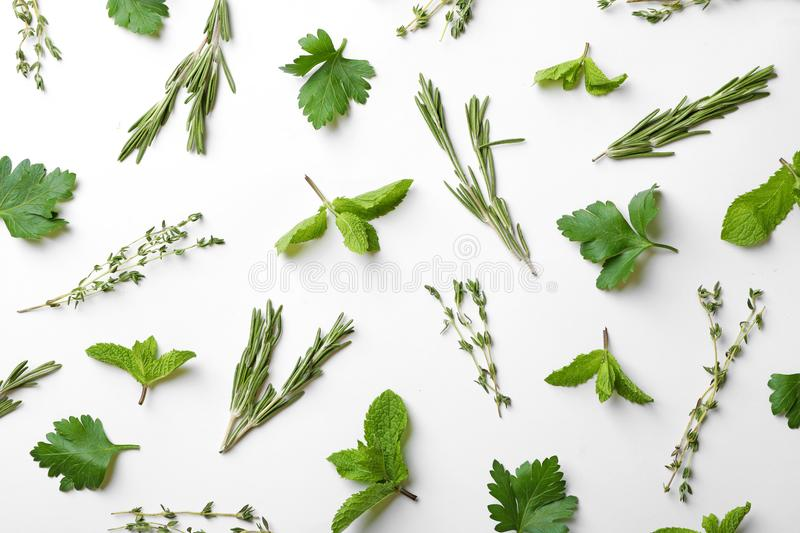 Different fresh herbs on white background. Top view stock image