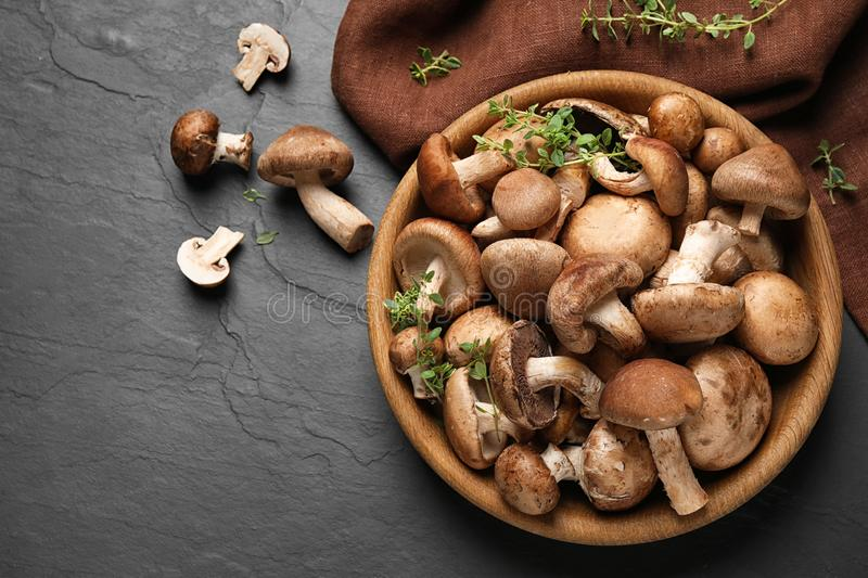 Different fresh wild mushrooms in bowl on background, flat lay royalty free stock photos