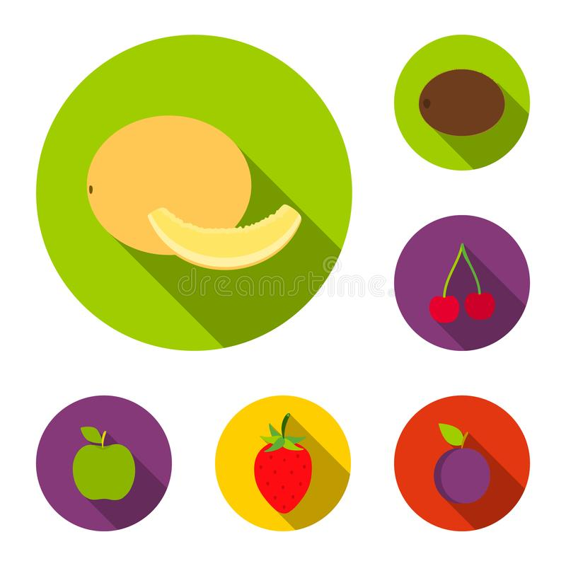 Different fruits flat icons in set collection for design. Fruits and vitamins vector symbol stock web illustration. stock illustration