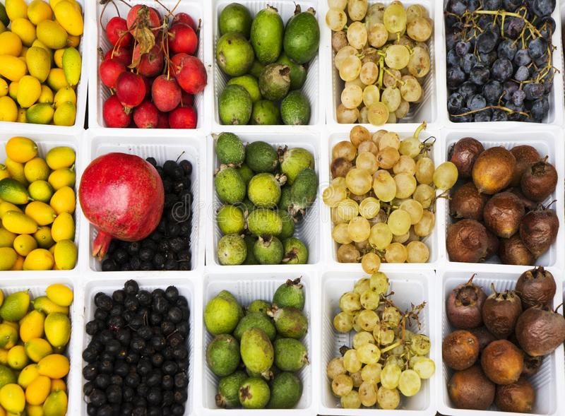 Different fruits, oranges, pears, feijoa, pomegranate, kiwi, figs, apples, black currants, Paradise apples, Greek nuts royalty free stock image