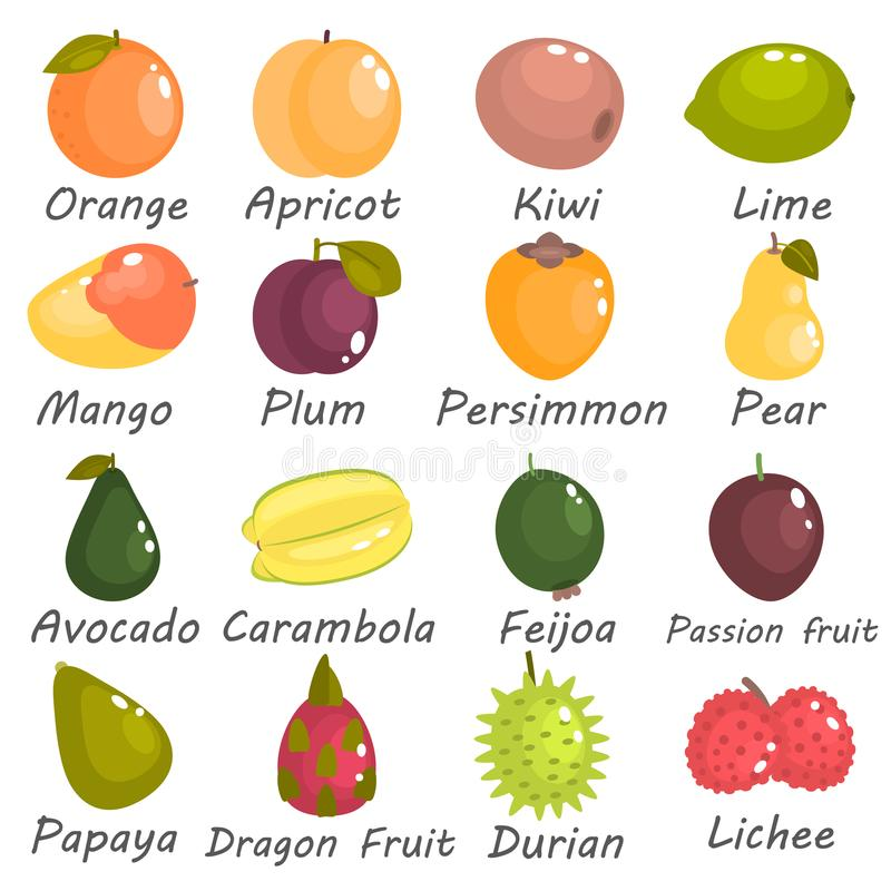 Different fruits of the world color flat icons set stock illustration