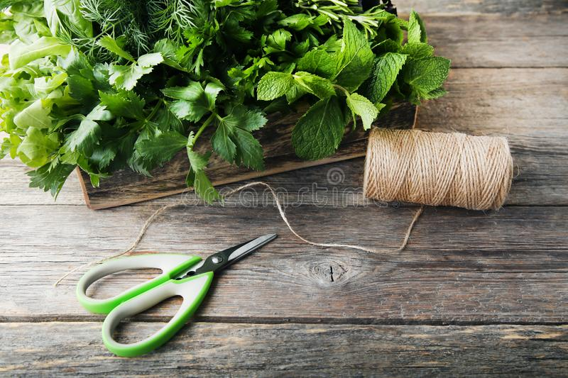 Different herbs. Different fresh herbs with scissors and rope on grey wooden table stock photography