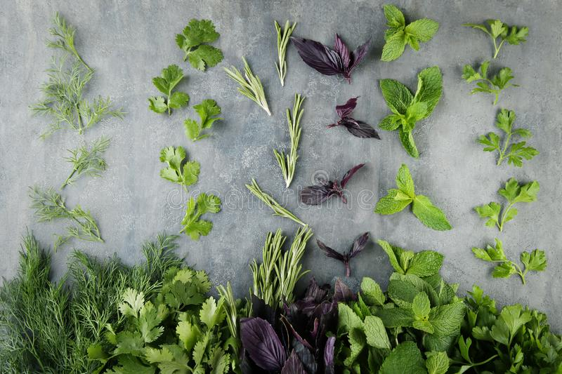 Different herbs. Different fresh herbs on grey wooden table stock photography