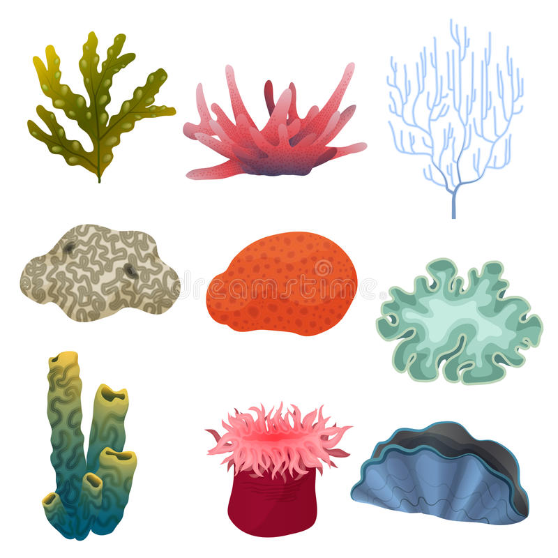 Different kind of cartoon underwater plants and color reef coral icons set. Sea bottom. royalty free illustration