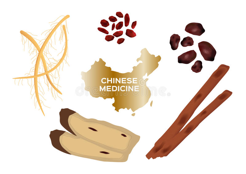 Different kind of Chinese herbal medicine for soup food stock illustration