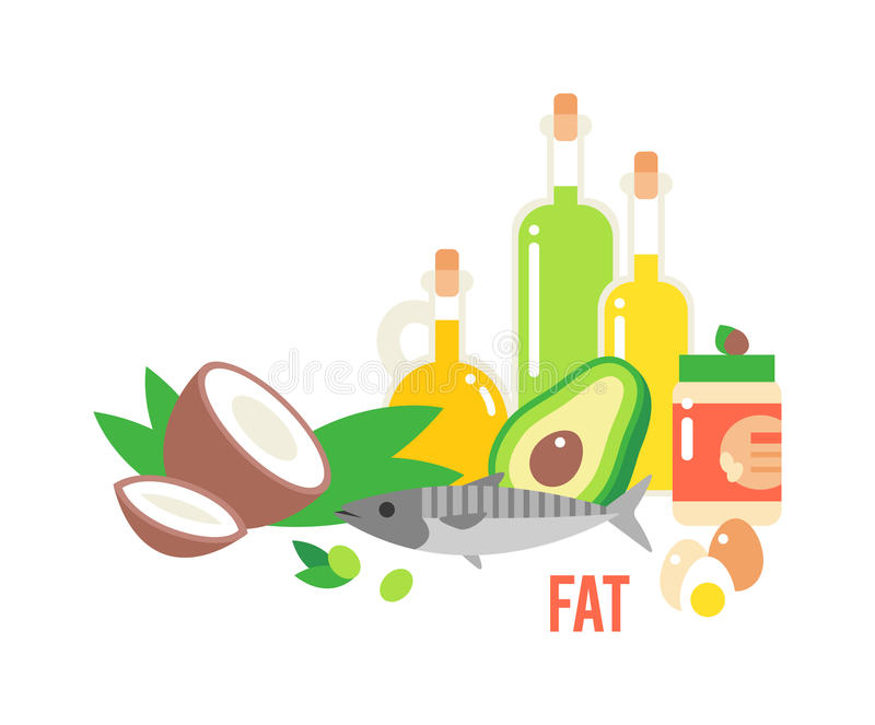 Different Kind Of Healthy Fat Stock Vector - Illustration of hazelnut, lifestyle: 73415865