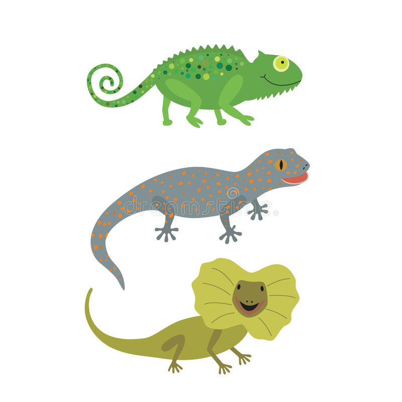 Different kind of lizards icons set. vector illustration