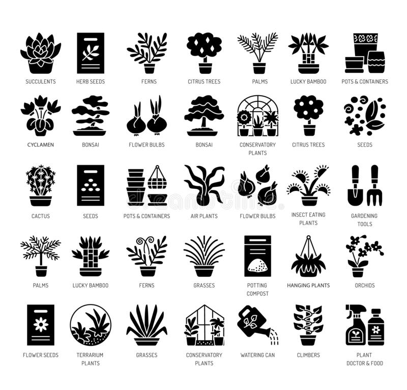 Different kinds of house plants in containers. Succulent, cactus, bamboo, palm, fern. Vector flat icon set. Isolated objects. On white background stock illustration
