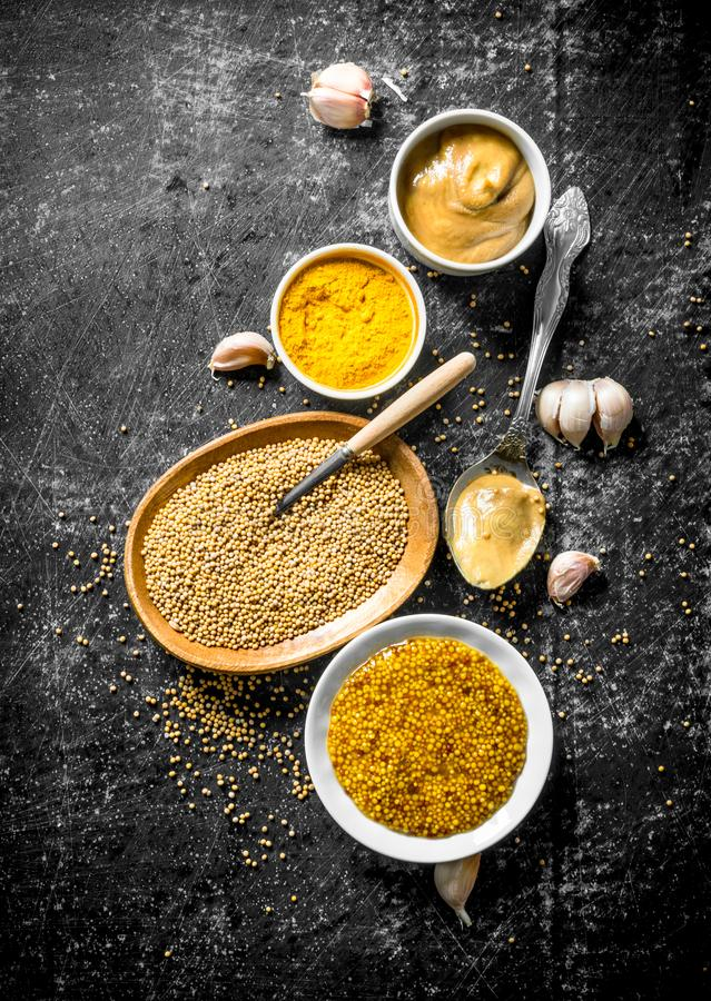 Different kinds of mustard with garlic. On dark rustic background royalty free stock images