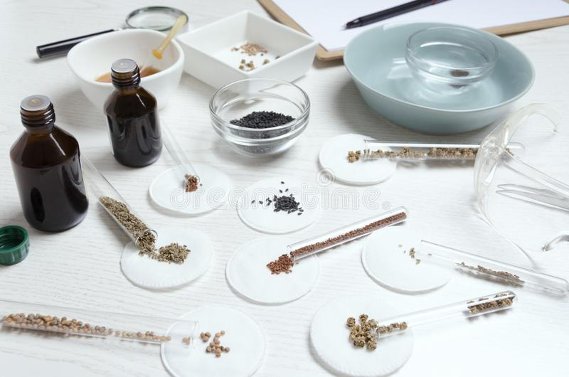 Different kinds of seed on agro laboratory table.Scientist making some procedures to establish the quality of product royalty free stock photos