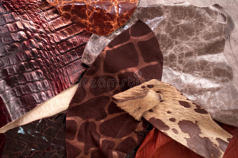 Download Different leather samples stock photo. Image of real - 19166924
