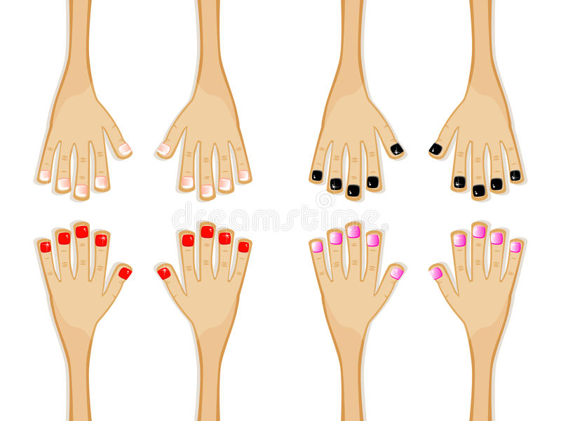 Different-manicures vector illustration