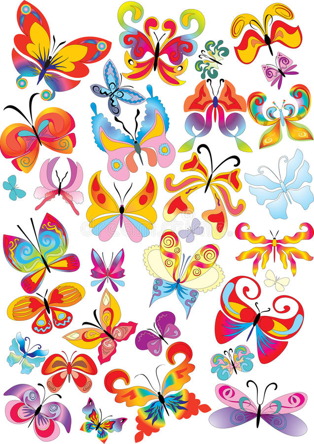 Different multicolored butterflies