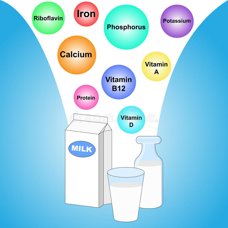 Different nutrients in milk. Illustration of different nutrients in milk stock illustration