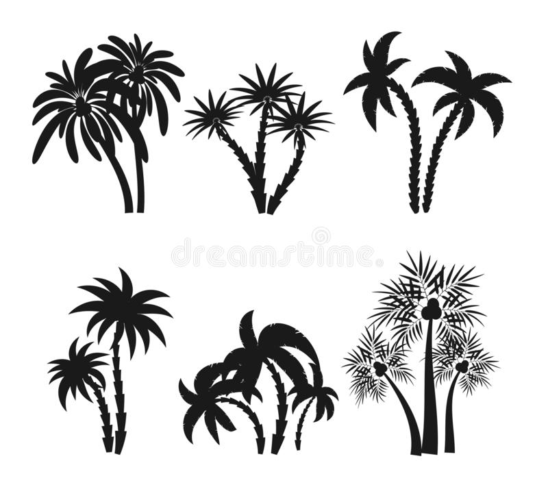 Different palm trees set silhouettes isolated on white background. Black tropical plants icons. Rainforest jungle plants royalty free illustration