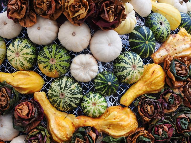 Different pumpkins and autumn leaves pattern stock photography
