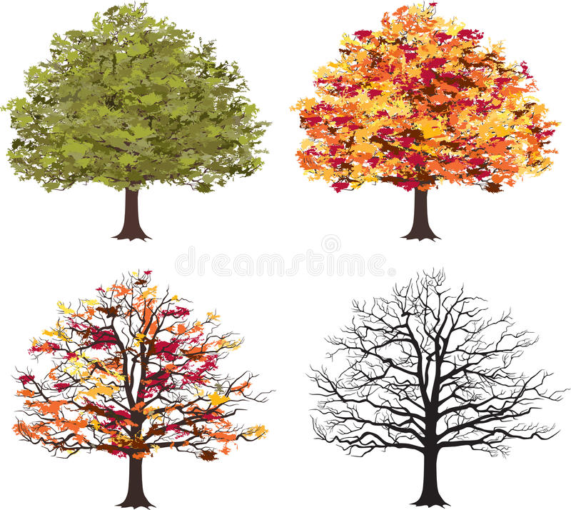 Different seasons of art tree. Vector royalty free illustration