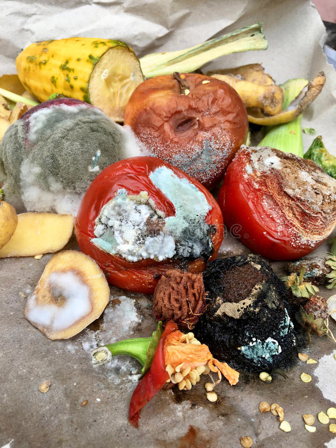 Free Different Sorts Of Rotten Fruits And Vegetables On Gray Paper I Stock Photography - 99220792