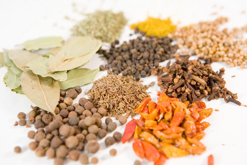 Different spices. Background of different spices on white stock photography
