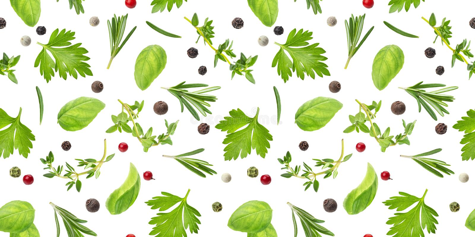Different spices and herbs seamless pattern isolated on white background, top view royalty free stock photography