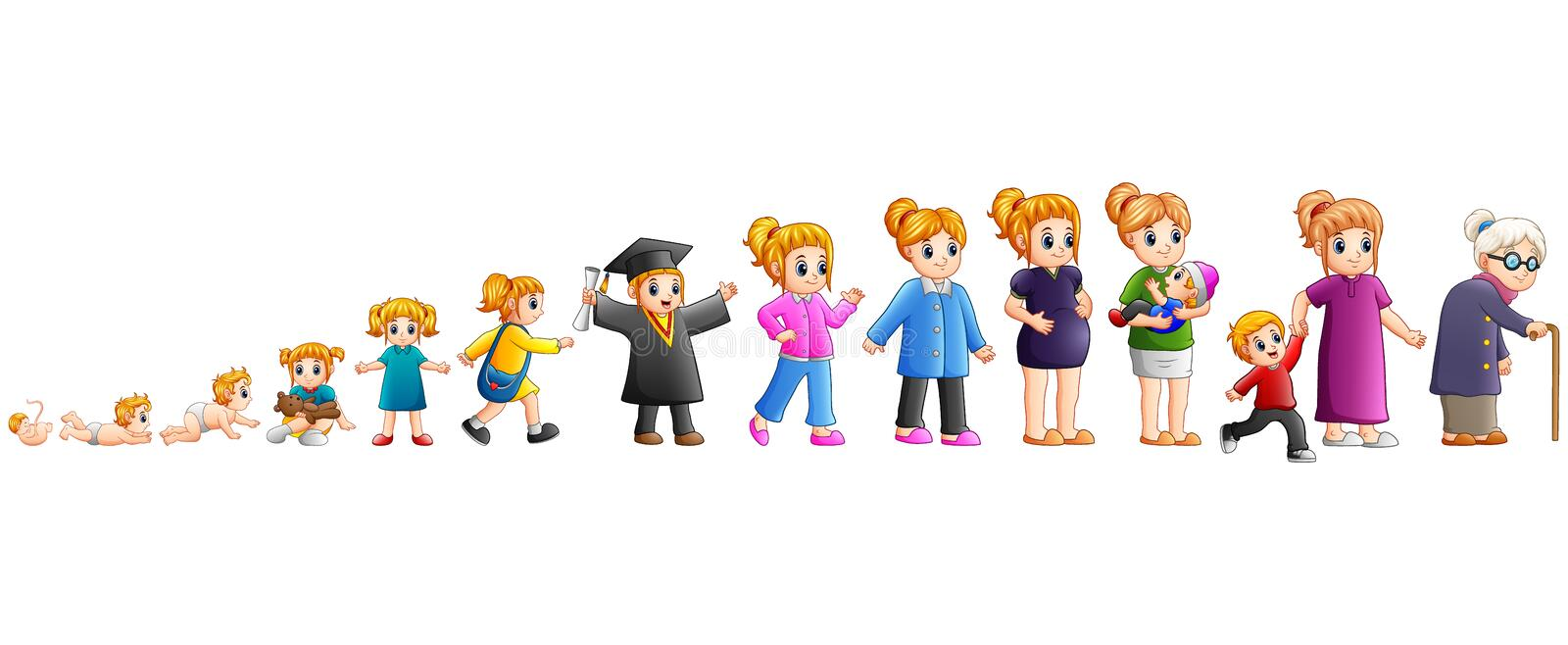Different stage of life of a female from baby to old vector illustration
