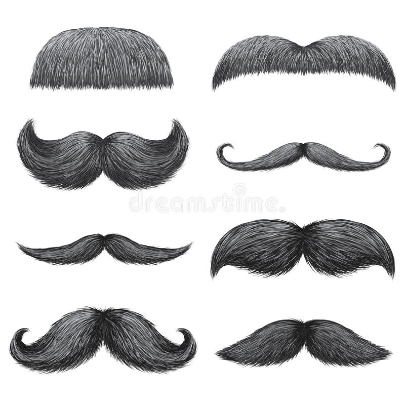 Different styles of male realistic mustaches set. Chevron, Dali, english, handlebar, imperial, lampshade, painter brush. Classic relaxed, thick thin man vector illustration
