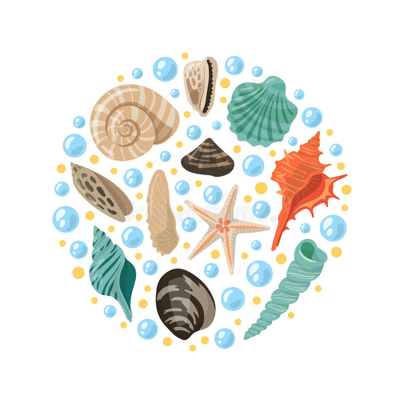 Different tropical shells in circle shape. Vector aquatic concept illustrations royalty free illustration