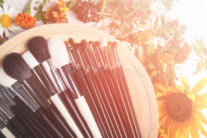 Different type of Make up brushes on a plate next to wild flower royalty free stock image