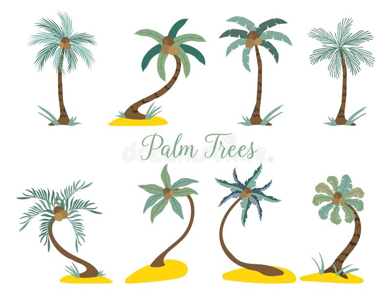Different type palm trees on the beach. vector illustration