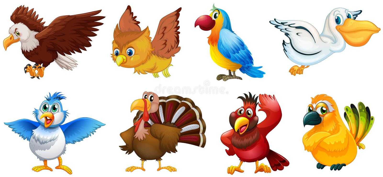 Different types of birds royalty free illustration