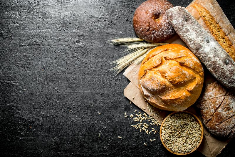 Different types of bread with grain and spikelets royalty free stock photo