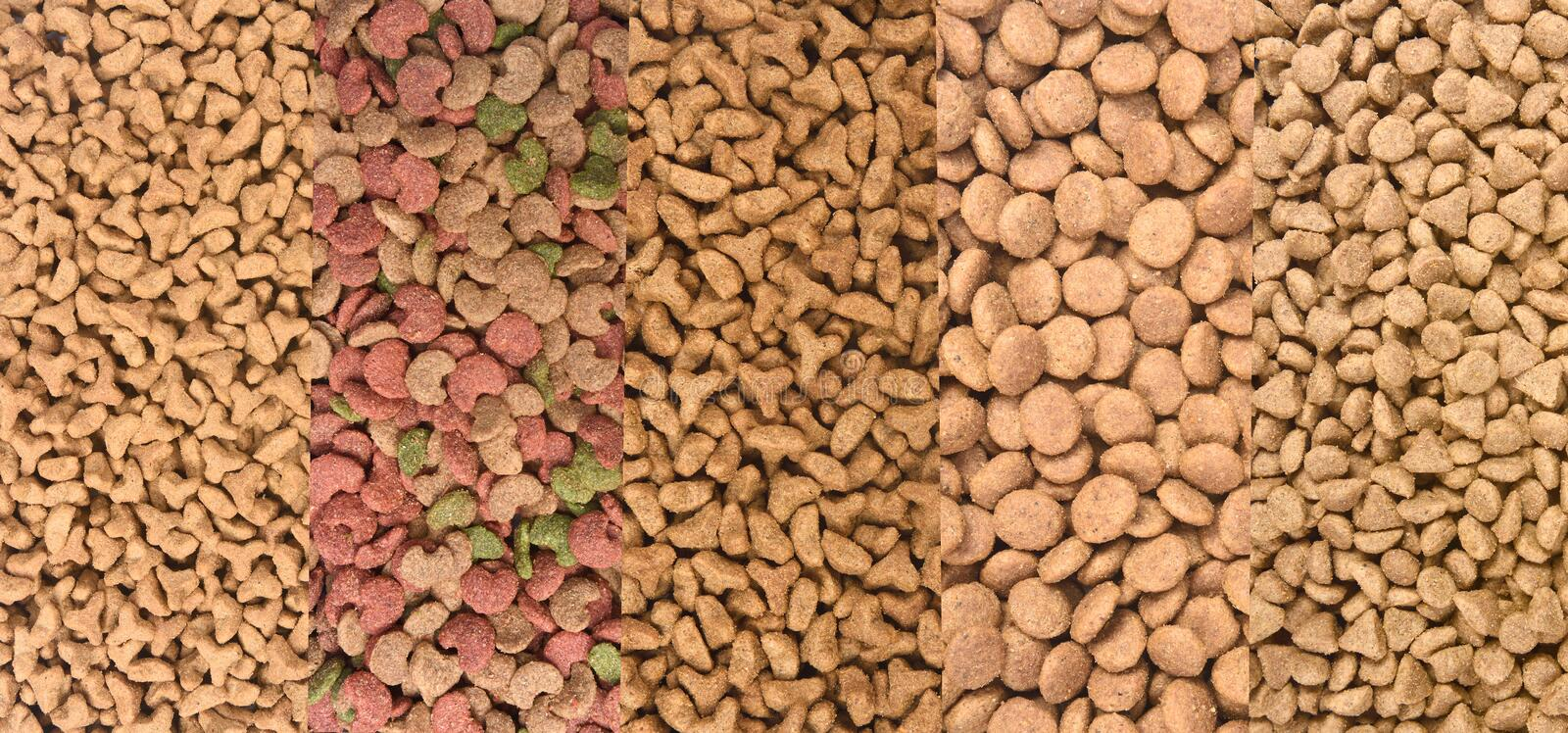 Different types of cat food.  royalty free stock photos