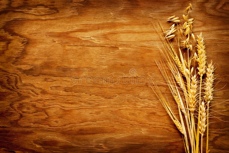 Different types of cereals displayed on vintage wood background royalty free stock images