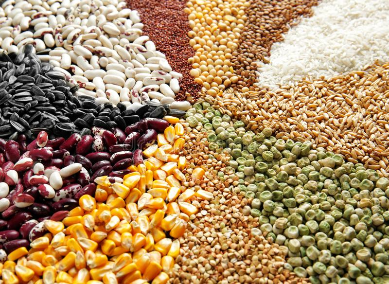Different types of cereals and legumes,. Closeup stock photo